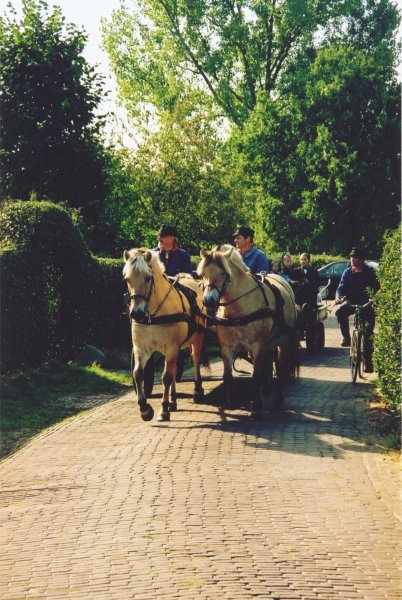 Werkpaard 2003 030