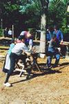 Werkpaard 2003 076