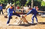 Werkpaard 2003 126